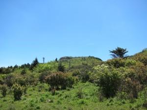 Mount Rogers 30